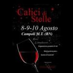 Calici di stelle-città del vino, X edizione dal 8 al 10 agosto 2011, Campoli del Monte Taburno, Benevento.