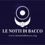 Le Notti di Bacco, il 22 e 23 luglio 2011, Ascea Marina, Salerno