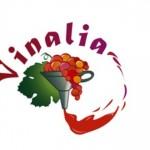 XVIII EDIZIONE DI VINALIA, dal 4 al 10 AGOSTO, Guardia Sanframondi – Benevento