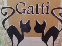 Riflessioni. Azienda agricola Gatti, Rabosando!