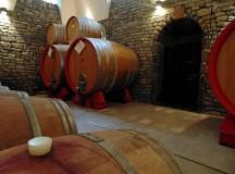 Per San Martino cadono le foglie e si spilla il vino, evento all'Antico Castello a San Mango sul Calore (Avellino)