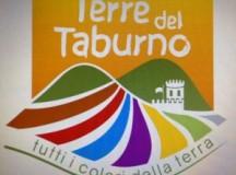 VINI DEL TABURNO: ARRIVA IL DAL MARCHIO D'AREA. La promozione passa da un progetto di marketing del Gal Taburno