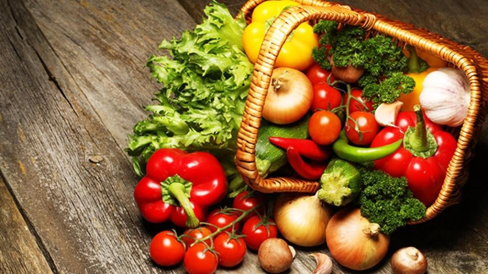 Gustosamente sani: foodblogger e docenti dell'Università Federico II per il rilancio del buon cibo e della corretta dieta alimentare