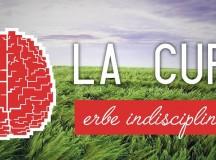 LA CURA e le Erbe Indisciplinate per tanti tipi di Giardino.