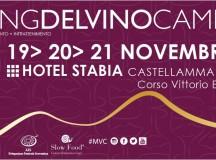 19- 21 Novembre  Meeting del Vino Campano all' Hotel Stabia
