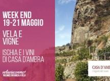 WEEKEND in barca a Vela 19-21 MAGGIO- VELA E VIGNE  Ischia e i vini di Casa D'Ambra