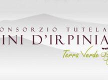 Arriva il  riconoscimento ministeriale per il Consorzio di tutela dei vini dell'Irpinia