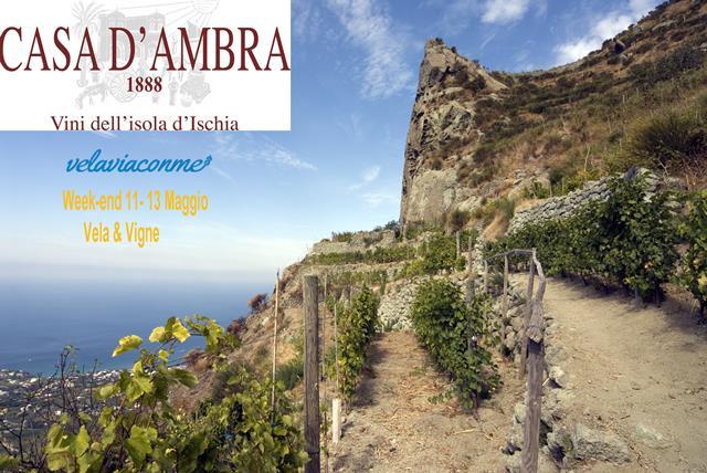 11-13 Maggio  Weekend Vela & Vigne :  Ischia & Casa D'Ambra